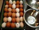 「[料理]30個の卵を投入して作る「巨大目玉焼き」調理の一部始終。」のイメージ