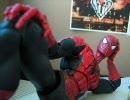 蜘蛛男はとても(色んな意味で)多忙な生活を送っているようです