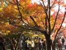 京都の動画集まとめ・その1(画質修正版)