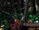スーパードンキーコング2 タミフルドンキー「タイヤジャングル」