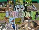 【ニコニコ動画】BIRD ZONEを解析してみた