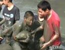 「堤干し」で中学生がコイつかみ取り体験