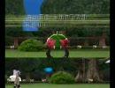 バトレボ・ランダム対戦 虫だらけの公園!(虫vs虫) PCでWiiテスト