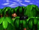 【久しぶりにチャレンジ】ドンキーコング バナナジャングル