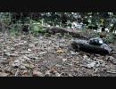 RC74式戦車で林道を走行