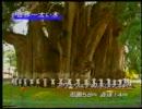 【ニコニコ動画】【たけしの】   木  【万物○世紀】1/2を解析してみた