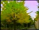 【たけしの】   木  【万物○世紀】2/2