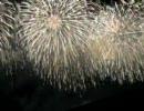 新潟 長岡花火大会2007 フェニックス