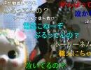 暗黒放送 11/04 7枠目昼【税務署通知報告放送】1/5 thumbnail