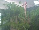 【ニコニコ動画】動物園でターザンになってきたを解析してみた
