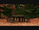 【ニコニコ動画】【FULL HD】紅葉の写真集1【1920x1080】を解析してみた