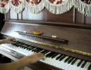 絶望先生OPをピアノで弾いてみた