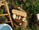 愛・地球博(愛知万博) 森の自然教室(南の森)のししおどし