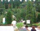愛・地球博(愛知万博) 「千年の森」の入口と東屋