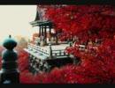 京都で『秋』を撮ってみた thumbnail