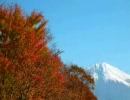 【ニコニコ動画】旅人なひととき '09 晩秋関西大周遊 #1を解析してみた