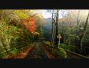 【ニコニコ動画】【茨城】 [大子] 月居峠 (旧月居トンネル)を解析してみた