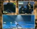 フィギュアスケート 2006 Xmas Gala ブライアン・ジュベール 【Armonia】