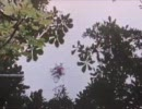 Familiar Trees - Knew Peace