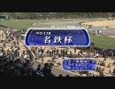 【競馬】 2010年 名鉄杯