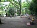 井の頭公園内風景