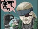 【ニコニコ動画】(゚Д゚)ホワァ!! 「 PLAY MY GAME - NONSTOP MIX Ver. - 」を解析してみた
