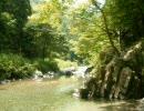 【ニコニコ動画】【作業用】癒される森の音詰め合わせ【自然音】を解析してみた
