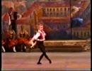 ドミトリー・ベロガロフツェエフのドン・キホーテ・一幕