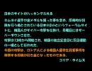 【ニコニコ動画】【海外の反応】 韓国人による2chへのサイバー攻撃に対する海外の反応を解析してみた
