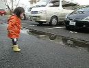 雨上がり2