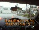 [動画]私的休日のドライブ in 達磨山