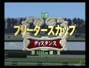交流BC <あきすて杯> ② 京都・芝3200m(年齢フリー)