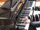 【スタインウェイ】ラコッツィ行進曲を弾いてみた【ホロヴィッツ】