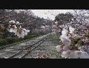 【HD】2010年春の京都・滋賀に行ってきた(4)【蹴上インクライン~】
