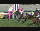 【競馬】 2010 産経大阪杯 テイエムアンコール 【ちょっと盛り】