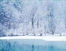 冬の旅人 (アルバムVer) 【良曲】