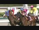 【競馬】 2010 阪神牝馬ステークス アイアムカミノマゴ 【ちょっと盛り】
