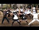 【せ~んきょ】GO!GO!選挙踊ってみた【せんきょ】 thumbnail