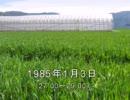 谷山浩子のオールナイトニッポン 1985年01月03日