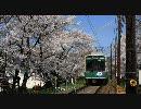 【HD】2010年春の京都・滋賀に行ってきた(9)【平野神社~】