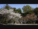 【HD】2010年春の京都・滋賀に行ってきた(11)【石山寺】