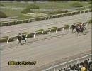 【競馬】 2010 兵庫CS バーディバーディ 【ちょっと盛り】