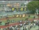 いおり賞(名古屋競馬:2010/5/5)