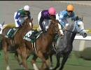 【競馬】 2010 新潟大賞典 ゴールデンダリア 【ちょっと盛り】