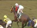 【競馬】 2006 ラジオNIKKEI賞 タマモサポート 【ちょっと盛り】