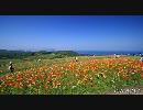 【HD】淡路島の風景【花博2010】