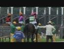 2010年第3回東京競馬第4日第10競走