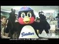 SPORA.TV#60「つばさんぽ~東京23区ほうもん~ 北区編」