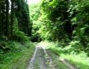 【オフ車限定】千葉の竹岡林道を走ってみた1素掘トンネル・地割ダート