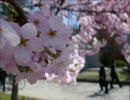 【作業用BGM】20代涙腺崩壊 懐かしのアニソンED曲集vol.4
